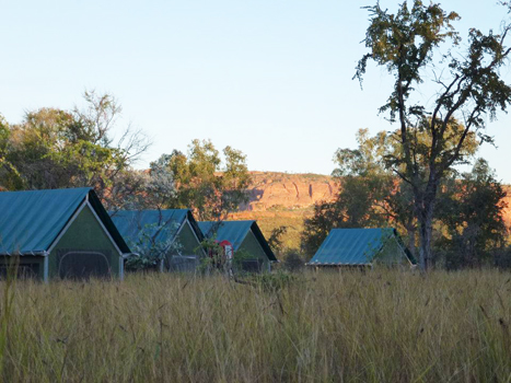 Bungles safari camp